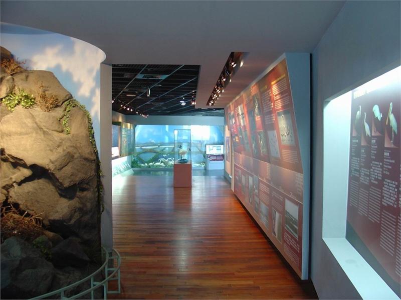 黑面琵鷺生態展示館