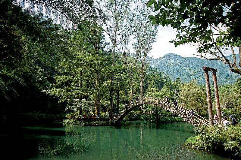 溪頭妖怪森呼吸 小半天遊憩一日遊