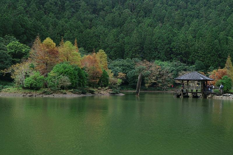 明池森林馬告神木園區雙響樂二日遊