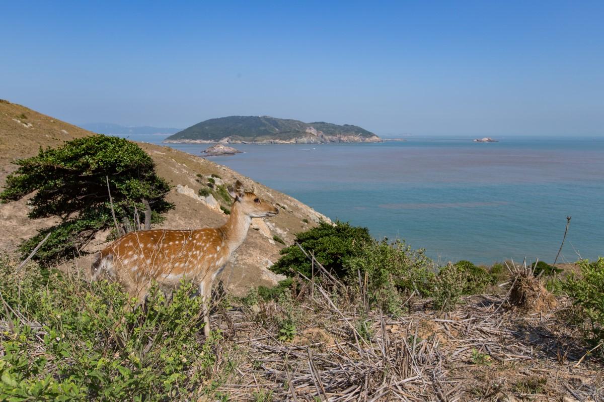 大坵島美景