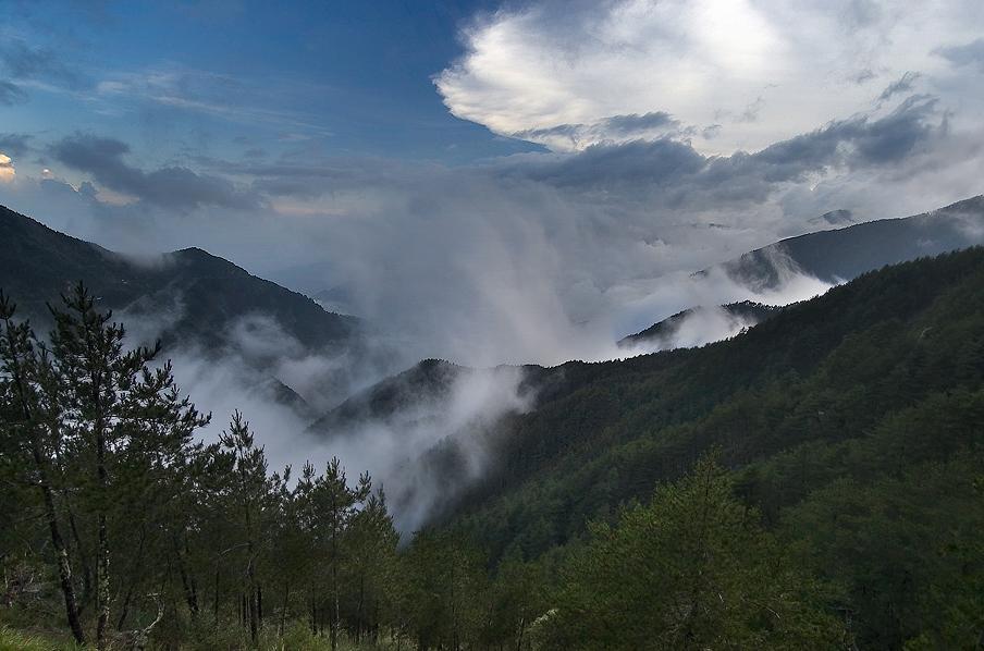 關山、埡口風景