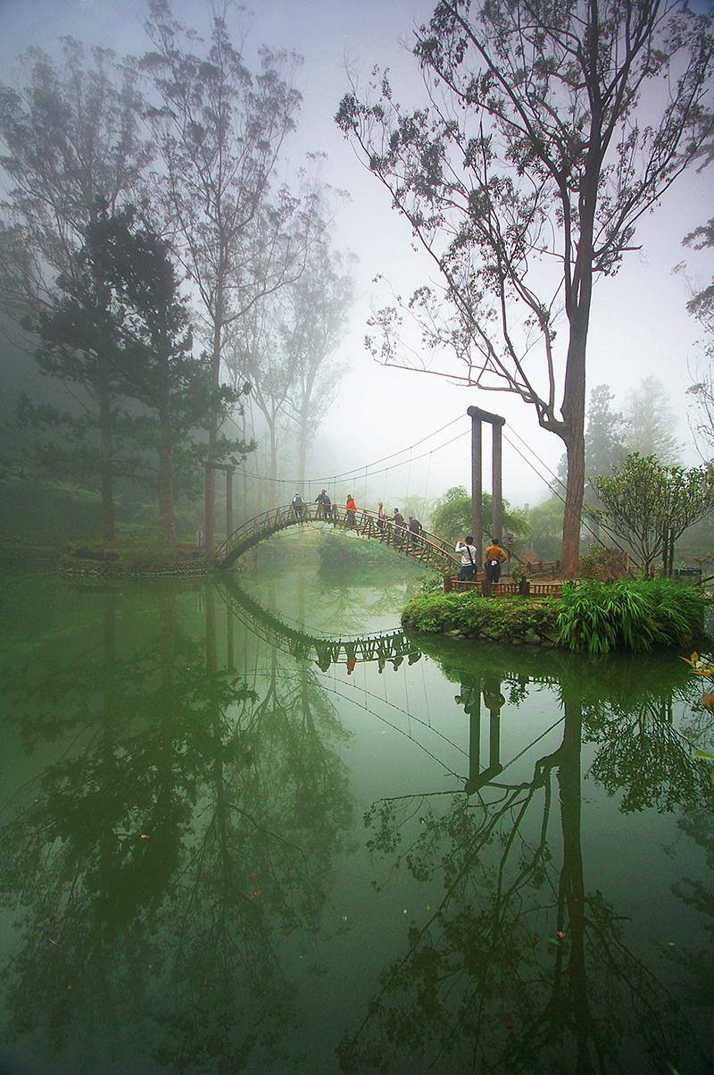 溪頭自然教育園區大學池