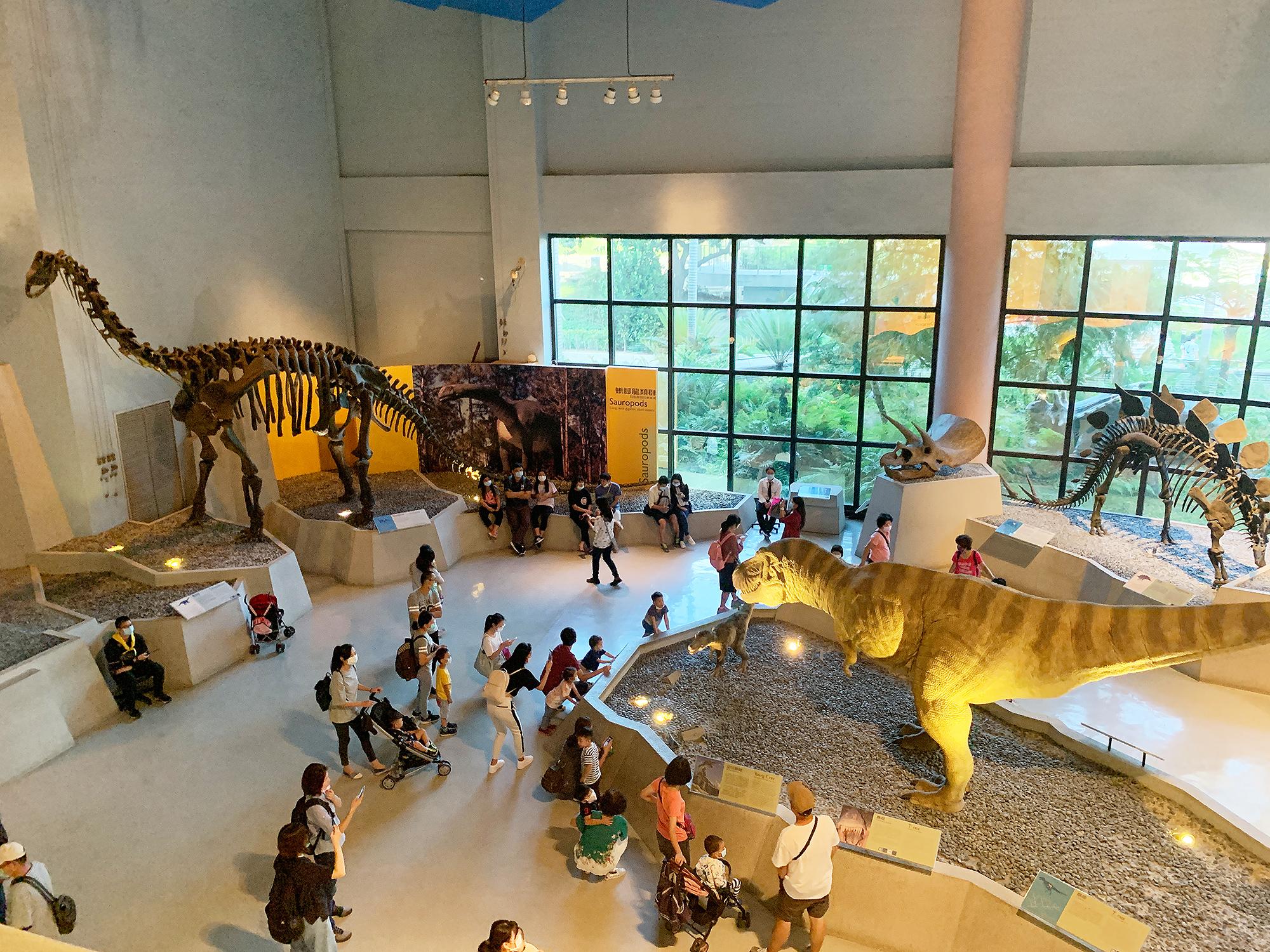 生命科學廳-恐龍時代