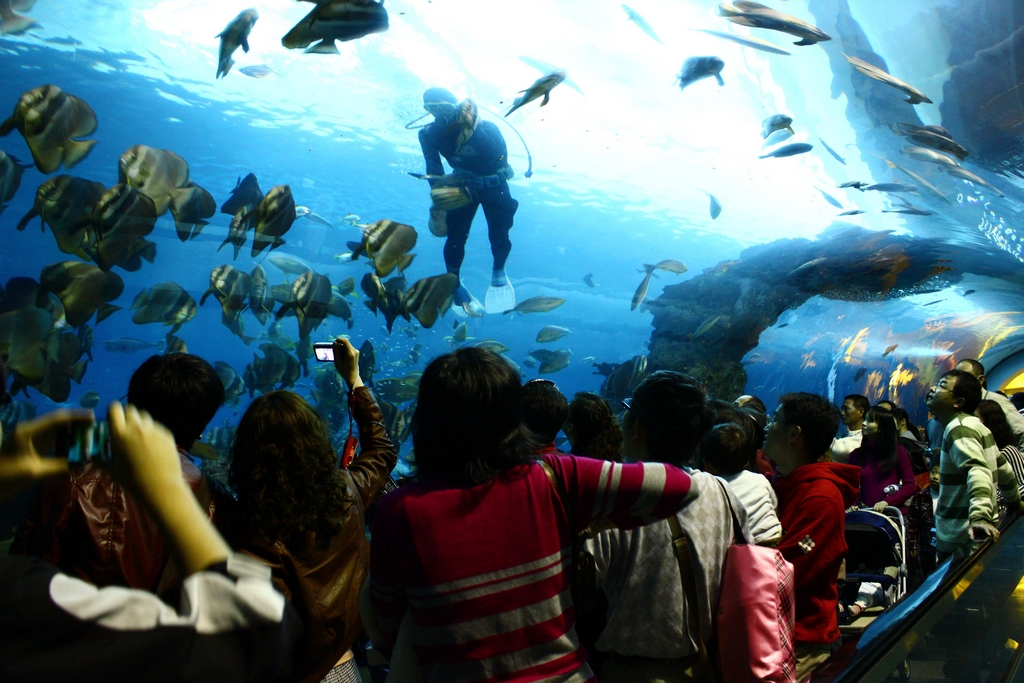 National Museum of Marine Biology and Aquarium