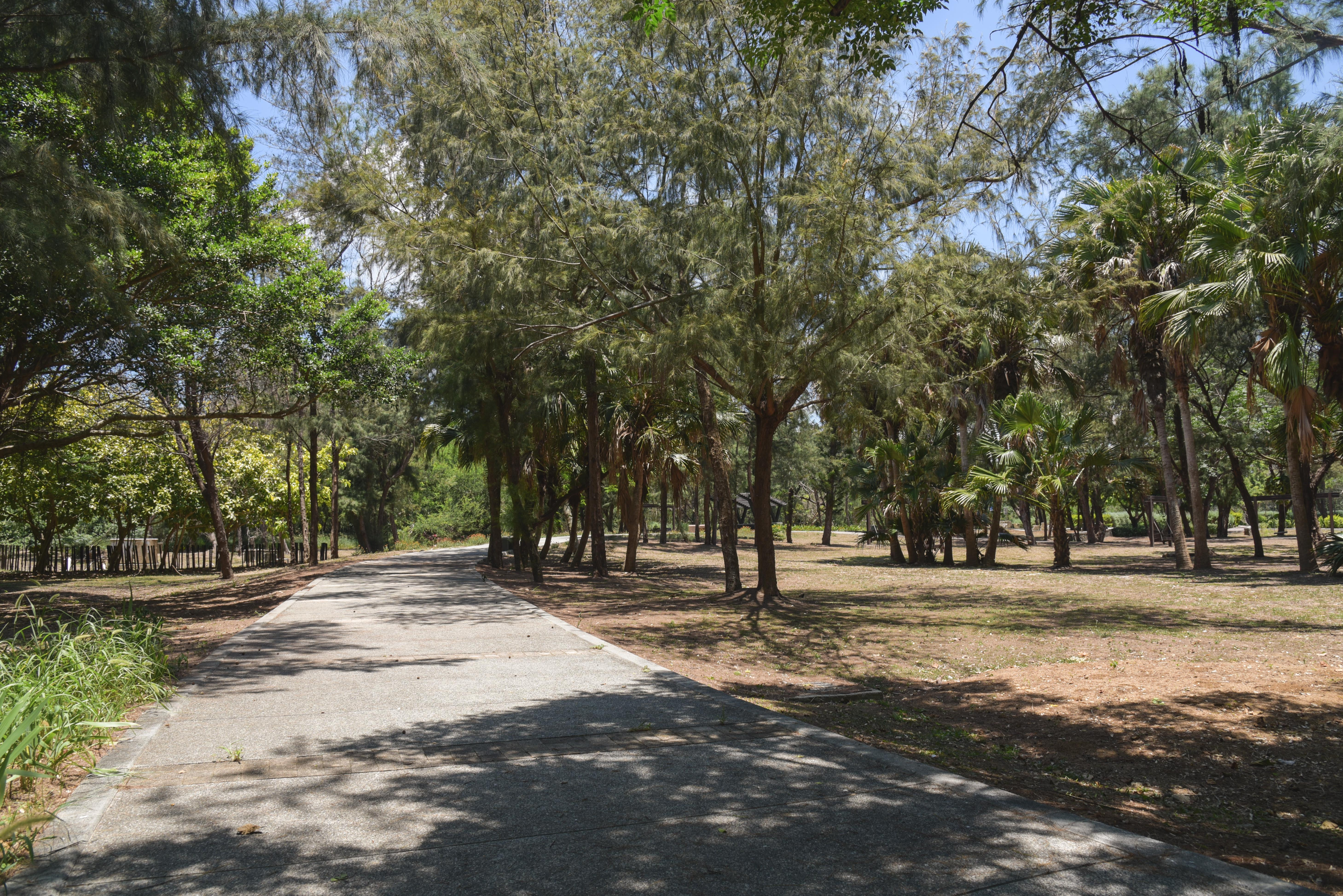 林投公園步道
