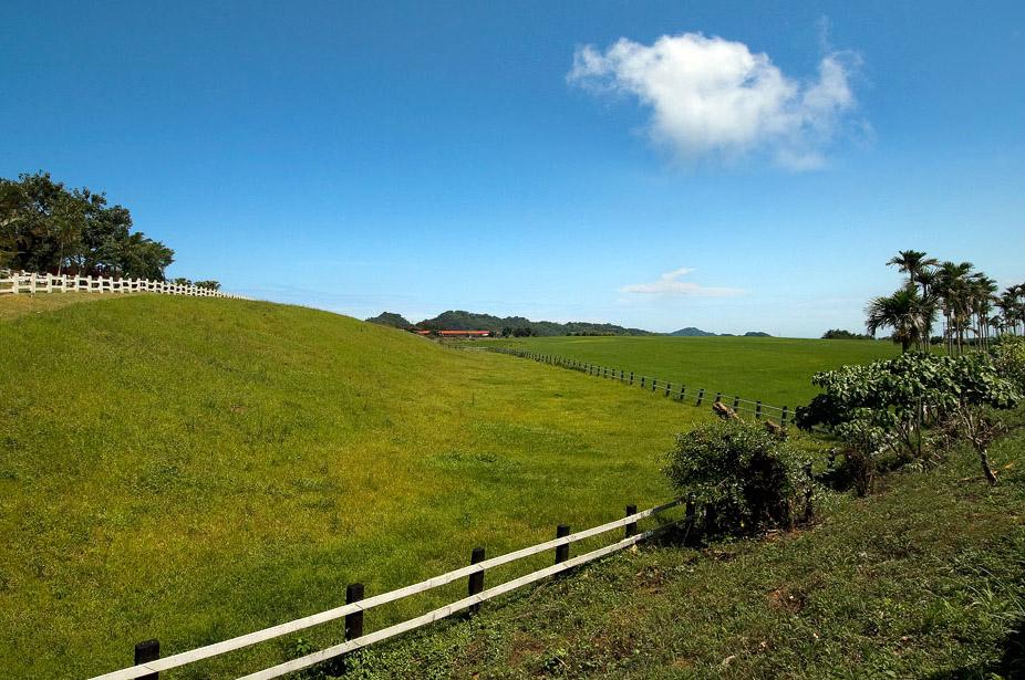 初鹿牧場風景