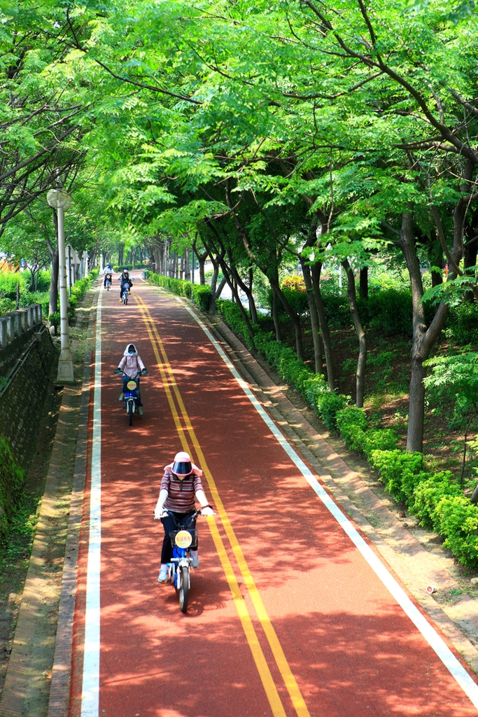 Dongfeng Bicycle Green Way