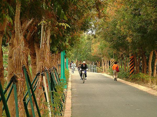 騎鐵馬漫遊東豐自行車綠廊