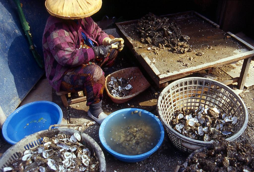 Budai Tourist Fish Market