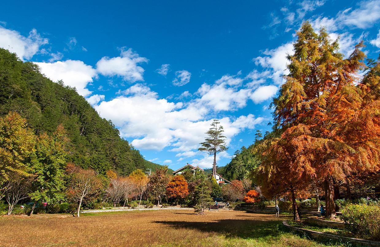 武陵國家森林遊樂區