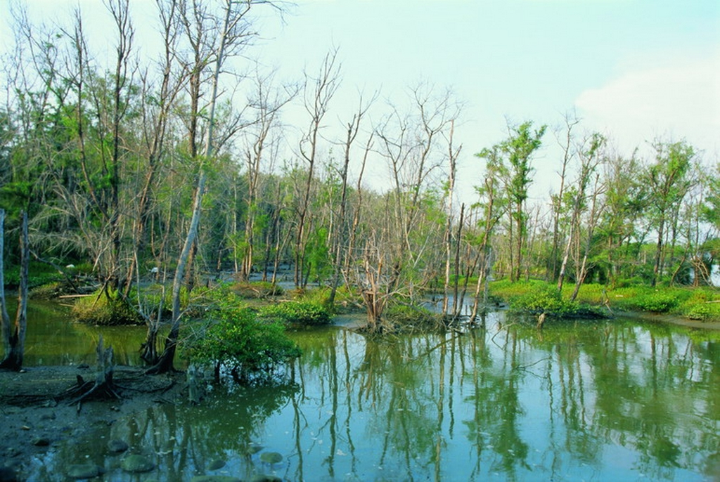 Haomei Village Nature Reserve