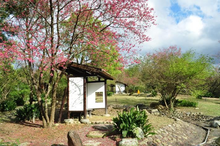 嵐庭(日式庭園植物展示區)