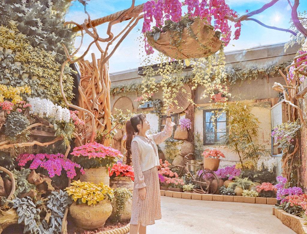 台灣夏天氣候高溫多濕,2019年10月份開幕全新的室內蘭花館,館內全年造景/花露農場提供