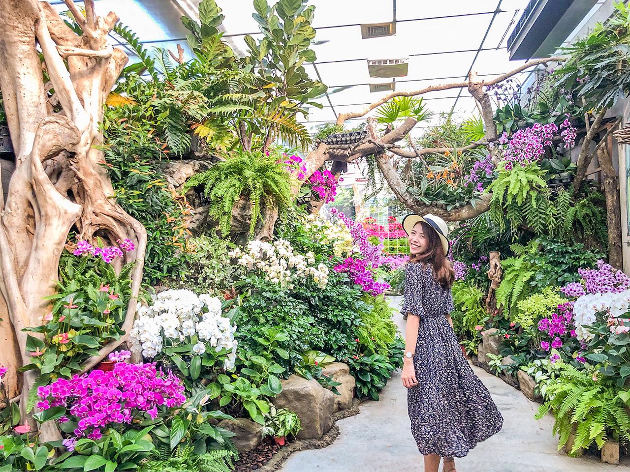 蘭花館為全年花季,依季節不同用蘭花搭配當季花卉/花露農場提供