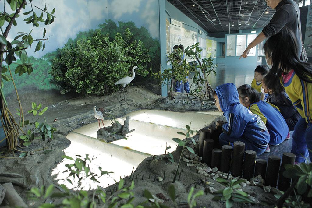 黑面琵鷺生態展示區