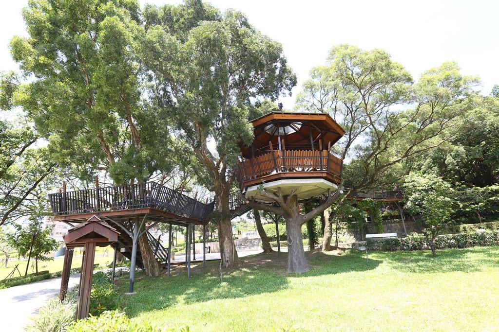 虎頭山公園-樹屋