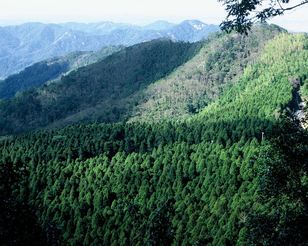 馬武連峰由本園區遠眺對面的馬武督山,為早期關西八景之一