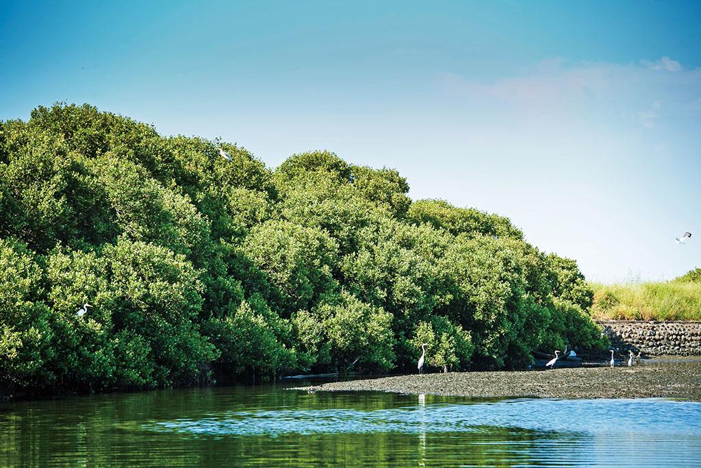 台江國家公園美景