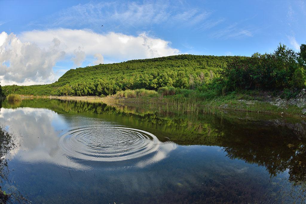 半屏湖的水影天光(內政部營建署壽山國家自然公園籌備處提供)