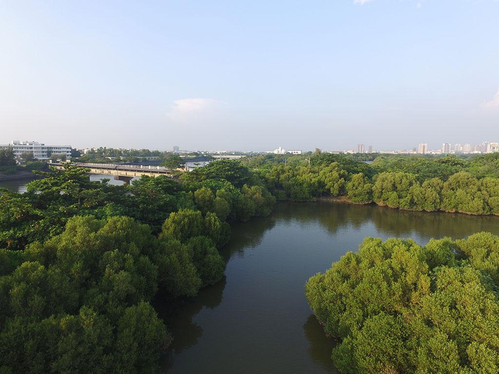 援中港濕地西區河道