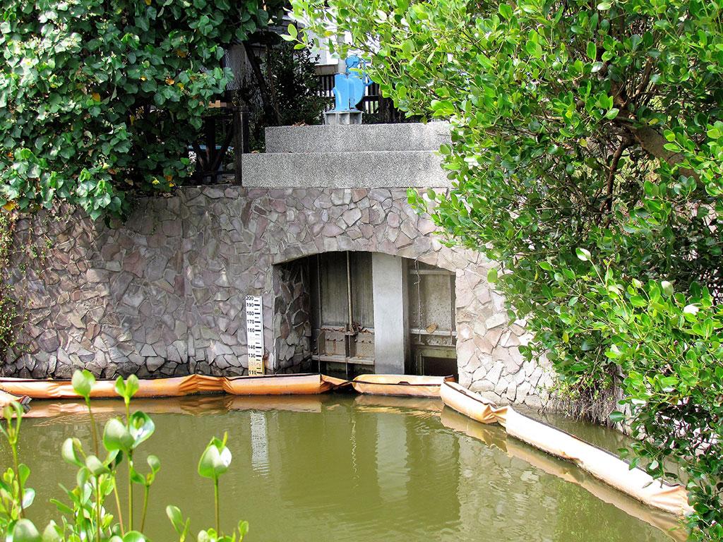 援中港濕地西區水閘口
