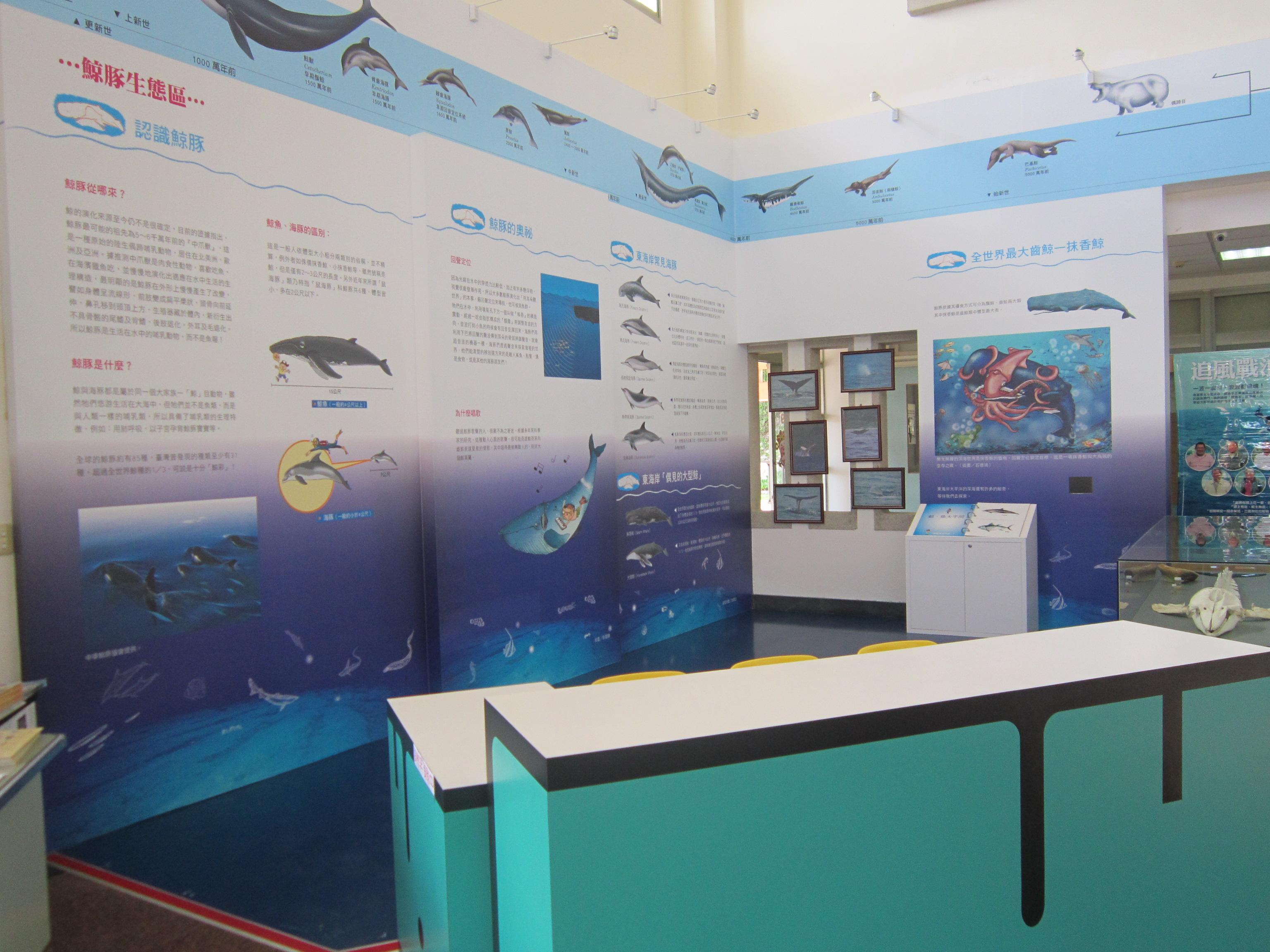 鯨豚生態區