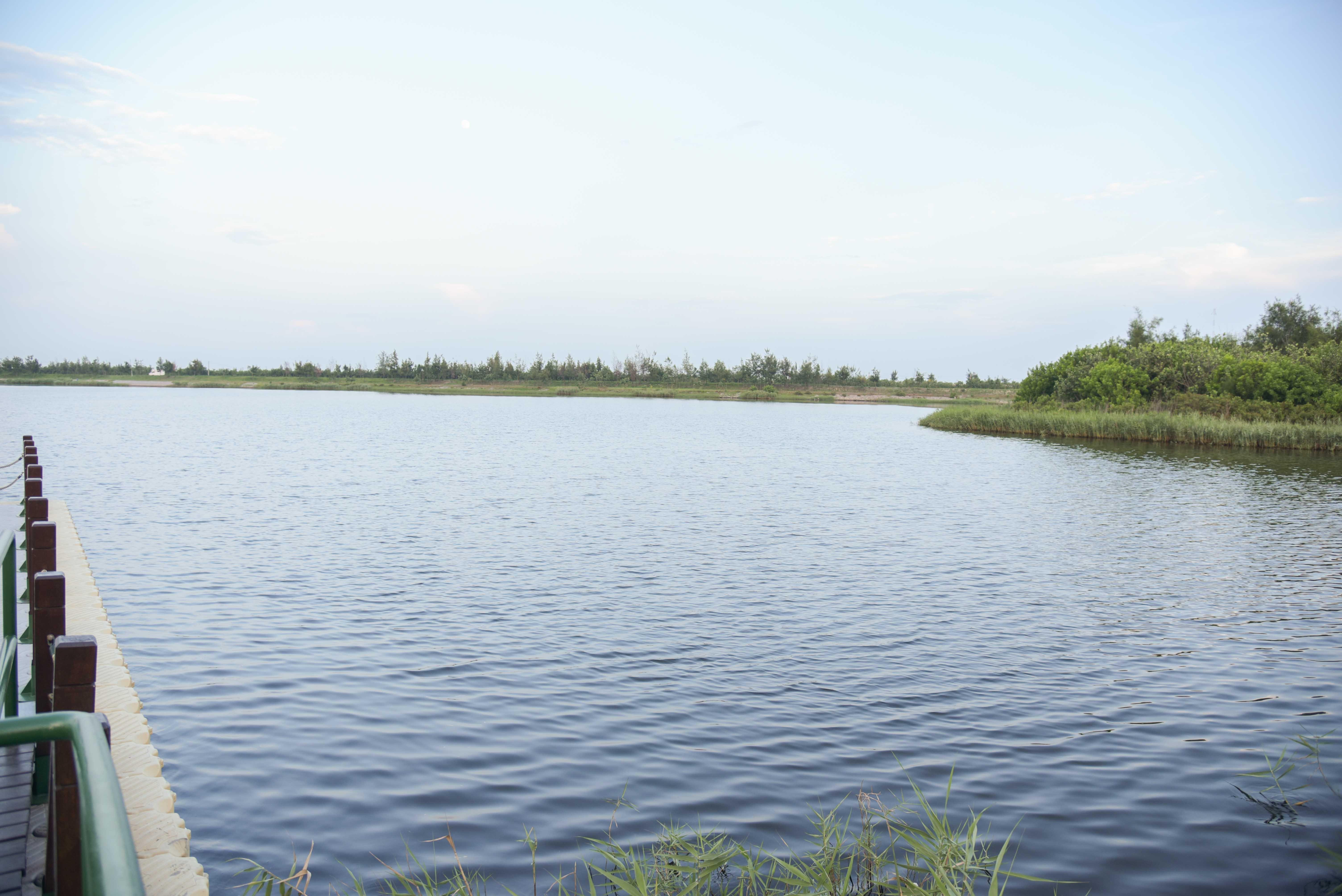 椬梧滯洪池景色