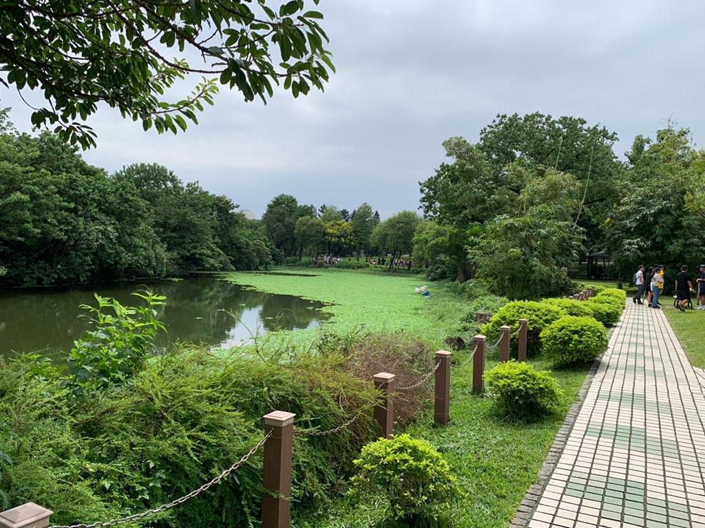 大安森林公園生態池