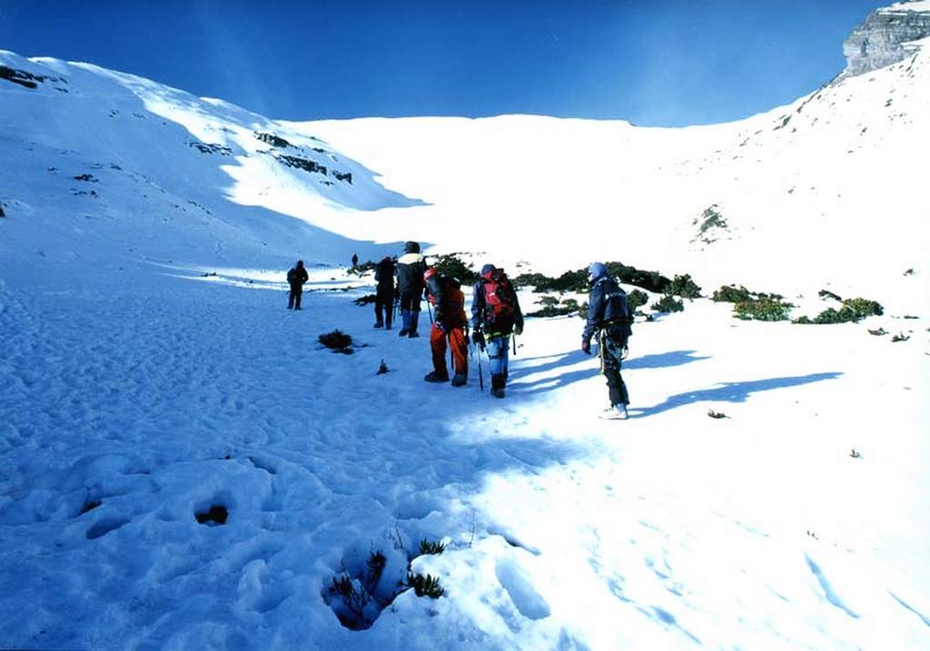 大雪山森林遊樂區-雪景
