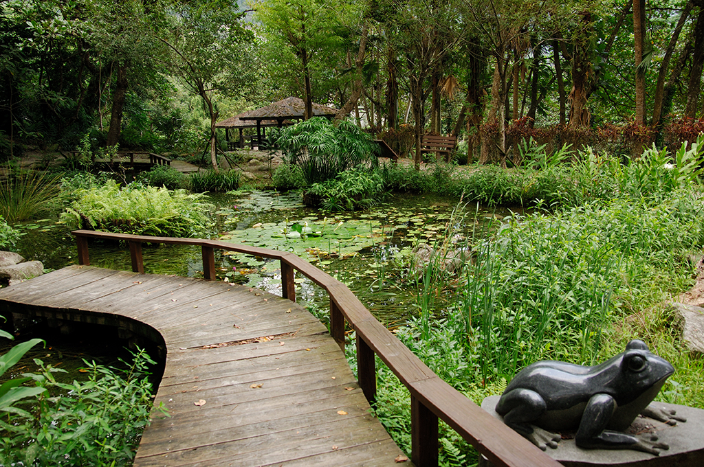 The ecological pond of Zhiben National Forest Recreation Area