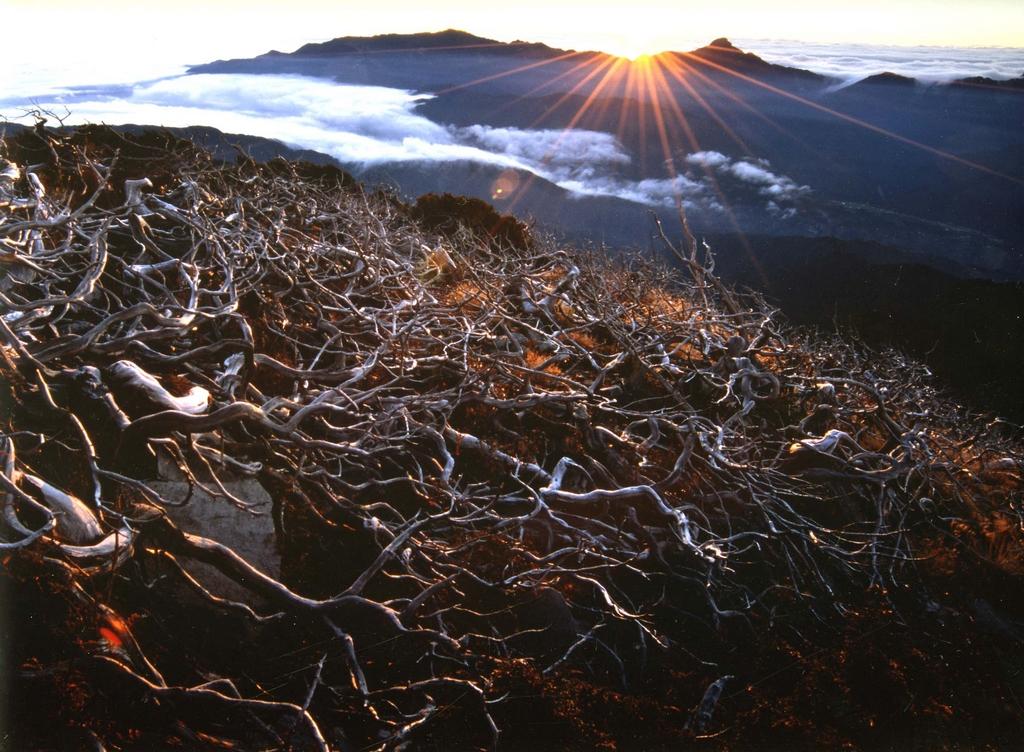 大雪山国家森林遊楽区