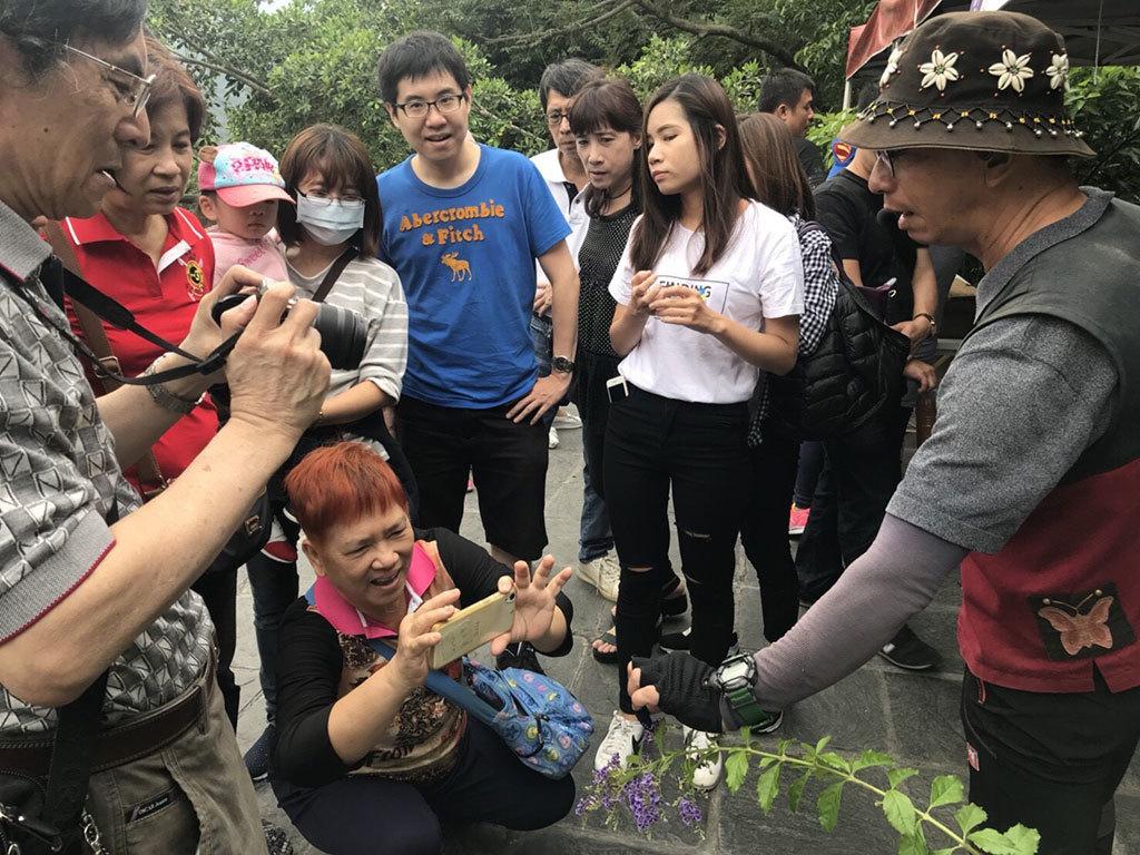 2017-18雙年賞蝶_紫斑蝶生態解說