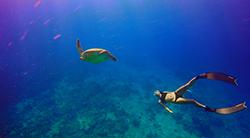 探索十島 優質行程