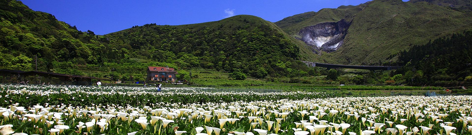 Montaña Yangming