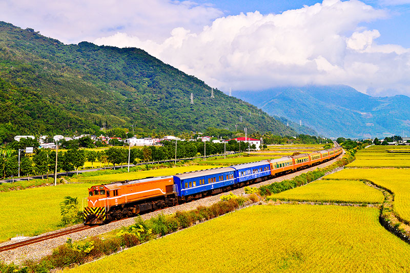 穿越稻田的火車