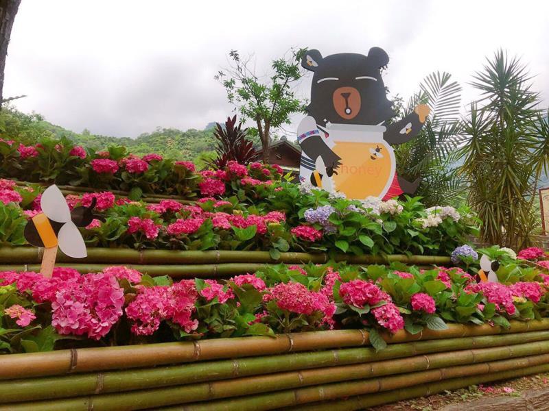 活潑生動的喔熊組長穿梭繡球花裝置藝術之中