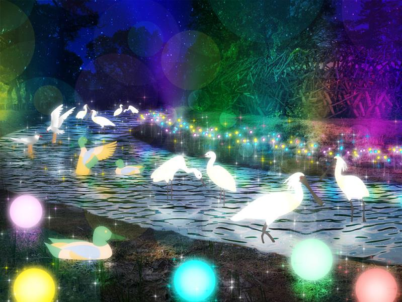 白鳥仙境奇緣