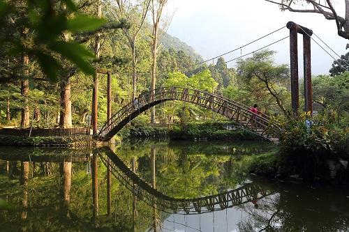 溪頭妖怪森呼吸 小半天風景區一日遊