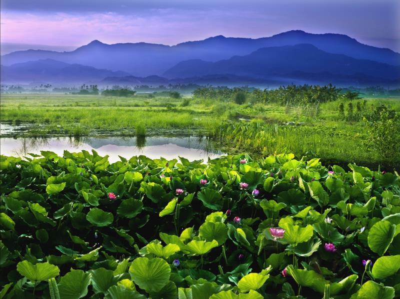 臺南白河關子嶺一日遊