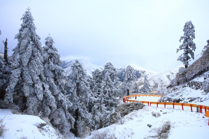 雪霸國家公園-武陵遊客中心
