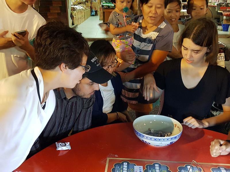 金好玩-博餅鄉鎮賽 外國旅客一起與金門在地鄉親同樂博狀元  年度:2019  來源:金門縣政府