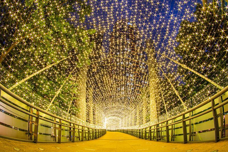 變色光廊-黃  年度:2019  來源:新北市政府觀光旅遊局