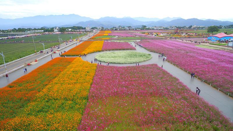 Fiesta de las flores de Xinshe  Período annual:2019  Origen de las fotografías:Mejoramiento del caldo de cultivo para semillas y plántulas del Comité Agrícola del Ejecutivo