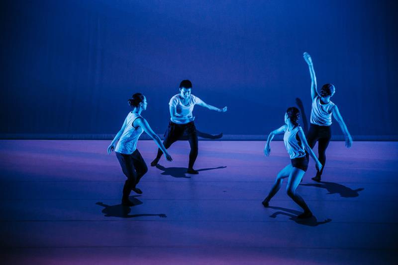 Hiroaki Umeda's Somatic Field Project 《contour》  Período annual:2018  Origen de las fotografías:National Performing Arts Center