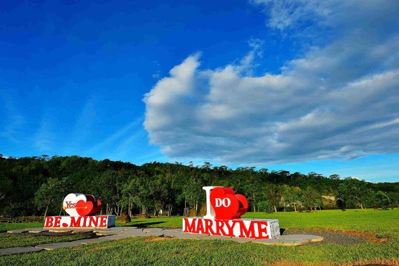 活動賽道經過美麗的牛埔仔愛情大草原,讓跑者在山景環繞的環境氛圍中享受馬拉松競速的同時,也能感受到阿里山的獨特美景。  來源:阿里山國家風景區管理處