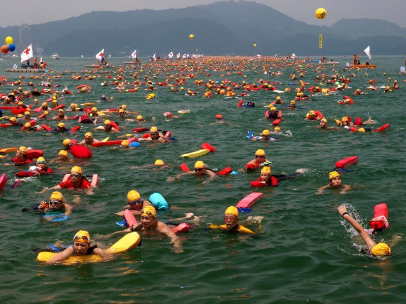 徜徉於泳渡中  年度:2011  作者:林育德