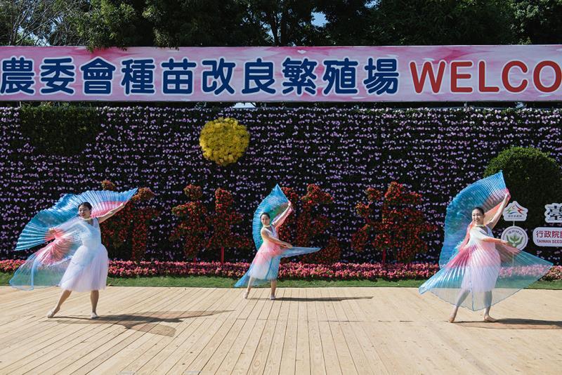 迎賓花海花牆  年度:2019  來源:行政院農委會種苗改良繁殖場