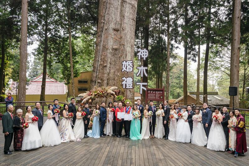 千年神木見證下浪漫婚禮  年度:2019  來源:阿里山國家風景區管理處
