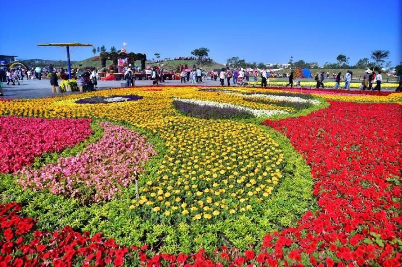 臺中國際花毯節  年度:2016