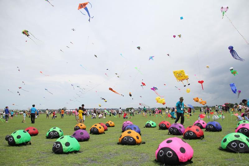 蟲蟲來襲  年度:2016  來源:屏東縣政府